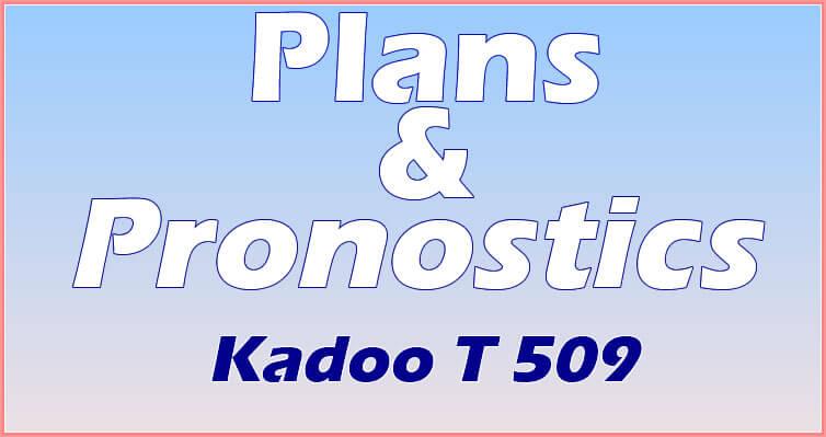 Pronostics du loto Kadoo